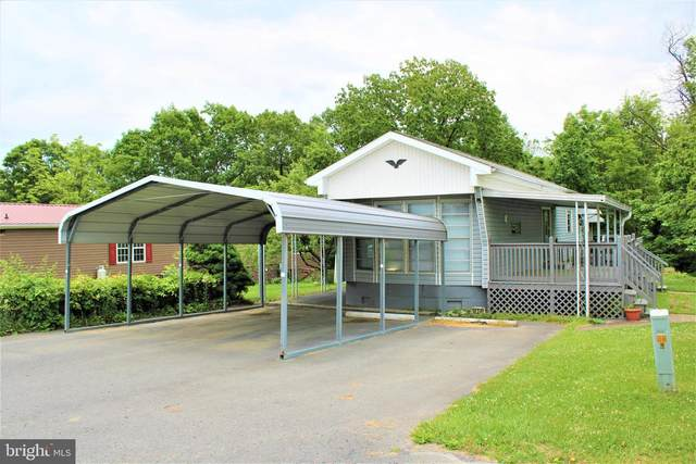 14240 Cunningham Drive SW, CRESAPTOWN, MD 21502 (#MDAL137186) :: Shamrock Realty Group, Inc