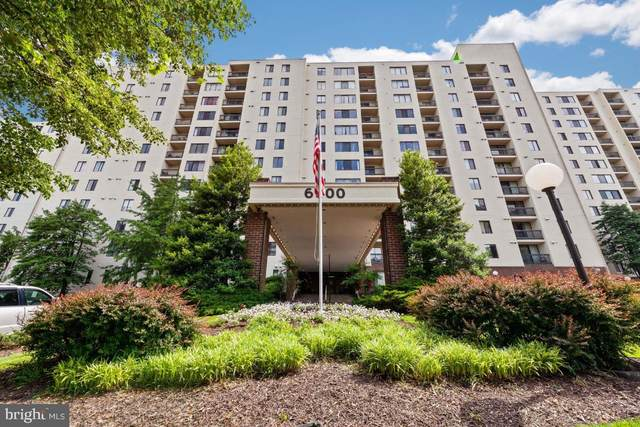6300 Stevenson Avenue #1113, ALEXANDRIA, VA 22304 (#VAAX260700) :: Tom & Cindy and Associates