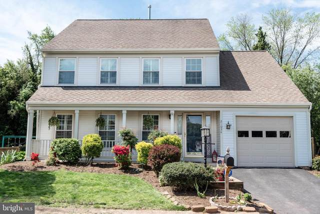 21034 Emerson Court, STERLING, VA 20164 (#VALO440756) :: Bowers Realty Group