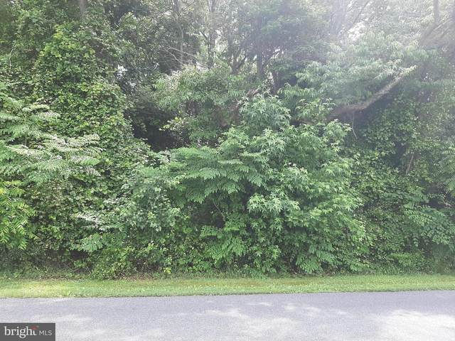 0 Johnson Road Aka Road 447 Lot 6, LAUREL, DE 19956 (#DESU184520) :: Brandon Brittingham's Team