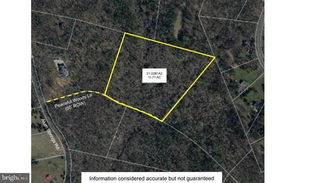 21-22B1A2 Alum Springs, CULPEPER, VA 22701 (#VACU144758) :: A Magnolia Home Team