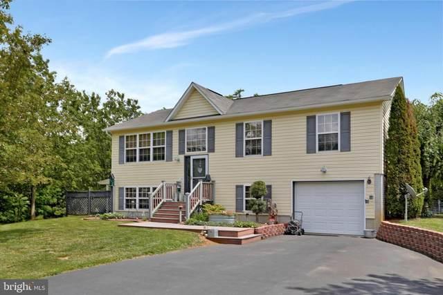 230 Baer Oak Drive, MAURERTOWN, VA 22644 (#VASH122508) :: Berkshire Hathaway HomeServices McNelis Group Properties