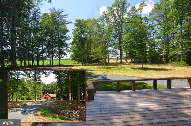7045 Pomona Road, CHESTERTOWN, MD 21620 (#MDKE118224) :: The Licata Group / EXP Realty