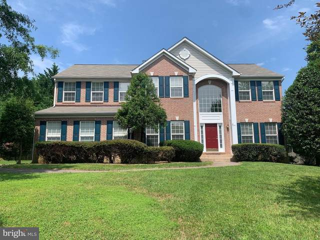101 Locust Grove Drive, PURCELLVILLE, VA 20132 (#VALO440846) :: Charis Realty Group