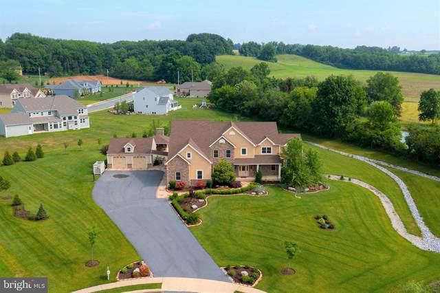 51 Chasen Court, READING, PA 19608 (#PABK378782) :: Colgan Real Estate
