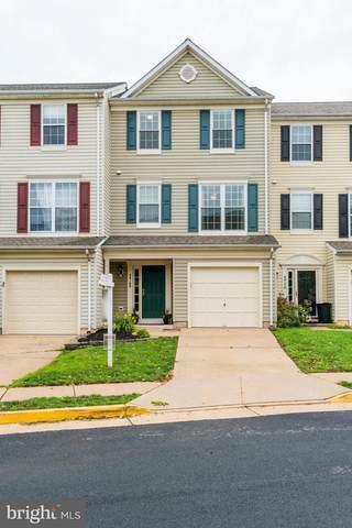 44168 Paget Terrace, ASHBURN, VA 20147 (#VALO440874) :: McClain-Williamson Realty, LLC.