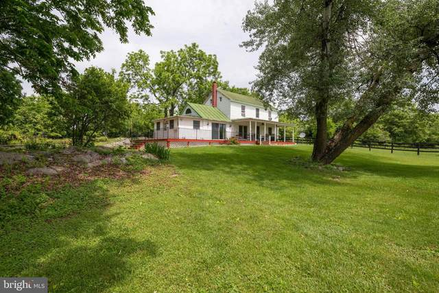420 Russell Road, BERRYVILLE, VA 22611 (#VACL112458) :: LoCoMusings