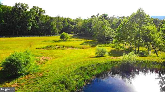 Timberland Manor, BENTONVILLE, VA 22610 (#VAWR143912) :: A Magnolia Home Team