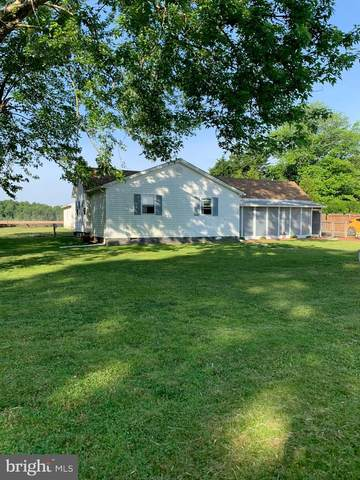8720 Swann Haven Road, EASTON, MD 21601 (#MDTA141392) :: Bright Home Group