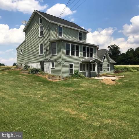 5880 Steltz Road, GLEN ROCK, PA 17327 (#PAYK160016) :: Liz Hamberger Real Estate Team of KW Keystone Realty
