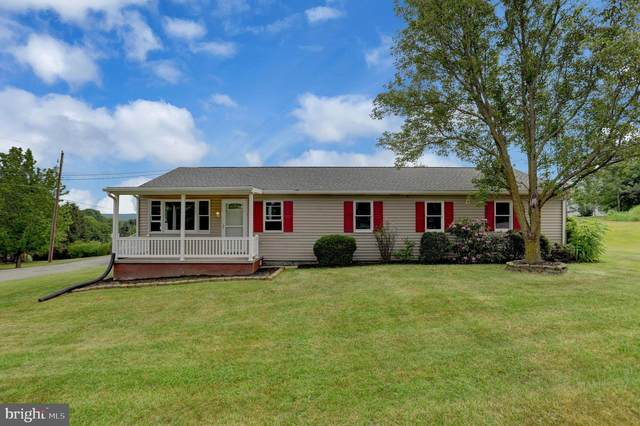635 New Bloomfield Road, DUNCANNON, PA 17020 (#PAPY103560) :: TeamPete Realty Services, Inc