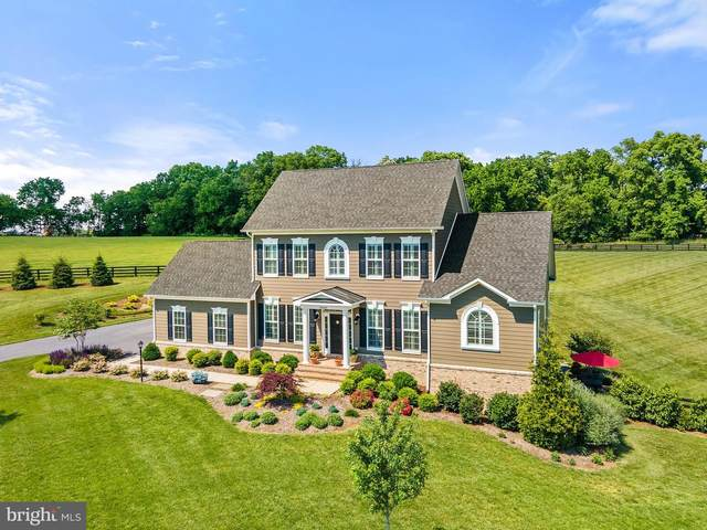 39682 Charles Henry Place, WATERFORD, VA 20197 (#VALO441012) :: LoCoMusings