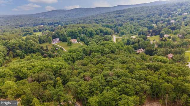 8860 Indian Springs Road, FREDERICK, MD 21702 (#MDFR283934) :: Ultimate Selling Team