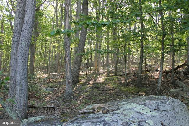 E21 Big Horn Trail, AUGUSTA, WV 26704 (#WVHS115828) :: The Sky Group