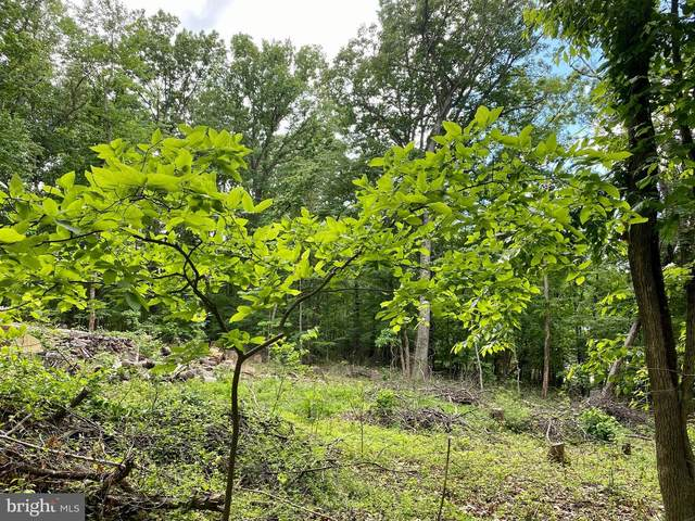 LOT 2 Red Maple, HARPERS FERRY, WV 25425 (#WVJF142914) :: Pearson Smith Realty