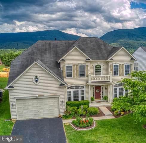 210 Princess Caroline Court, EDINBURG, VA 22824 (#VASH122560) :: Berkshire Hathaway HomeServices McNelis Group Properties