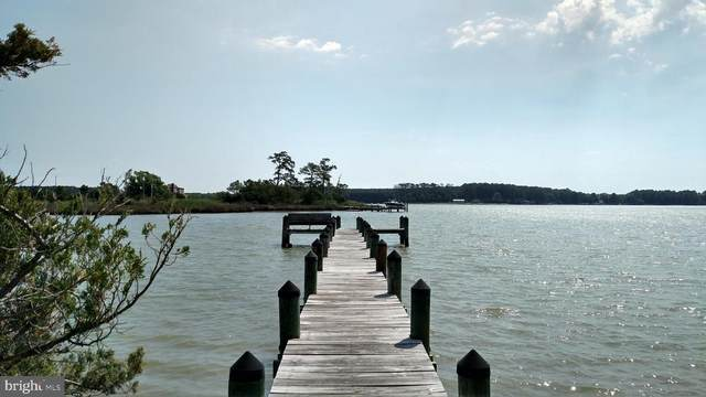 5315 Ragged Point Road, CAMBRIDGE, MD 21613 (#MDDO127584) :: RE/MAX Coast and Country