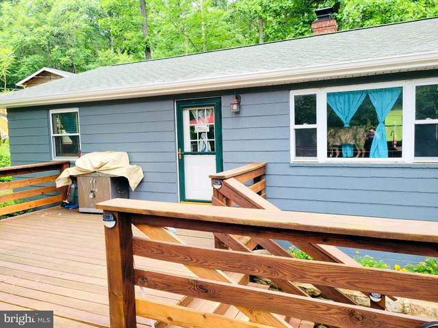 141 Geronimo Trail, WINCHESTER, VA 22602 (#VAFV164736) :: Eng Garcia Properties, LLC