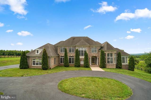42991 Spinks Ferry Road, LEESBURG, VA 20176 (#VALO441298) :: Pearson Smith Realty