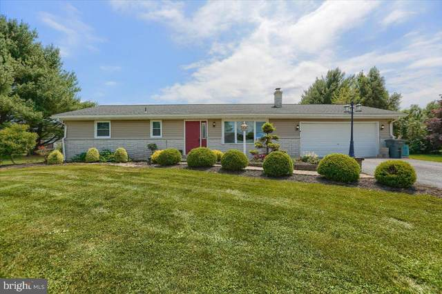 501 Stracks Dam, MYERSTOWN, PA 17067 (#PALN119730) :: Iron Valley Real Estate