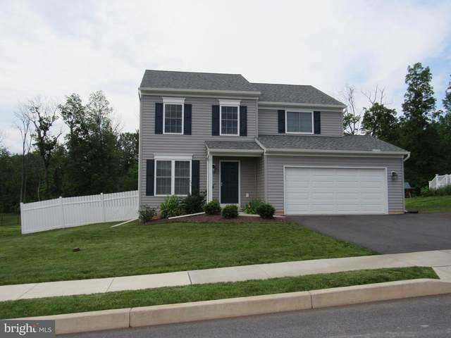 3 Cottonwood Lane, DENVER, PA 17517 (#PALA183856) :: The Craig Hartranft Team, Berkshire Hathaway Homesale Realty