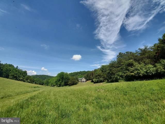 246 Mill Creek Lane, STAUNTON, VA 24401 (#VAAG100336) :: Better Homes Realty Signature Properties