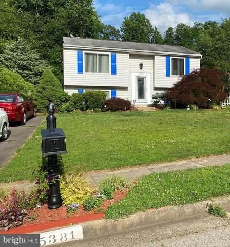 5381 Laura Belle Lane, FAIRFAX, VA 22032 (#VAFX1208532) :: Corner House Realty