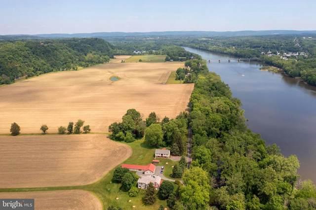 1005 River, ERWINNA, PA 18920 (#PABU530164) :: Nesbitt Realty