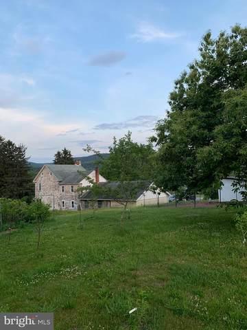 315 Summer Valley Road, ORWIGSBURG, PA 17961 (#PASK135768) :: Ramus Realty Group