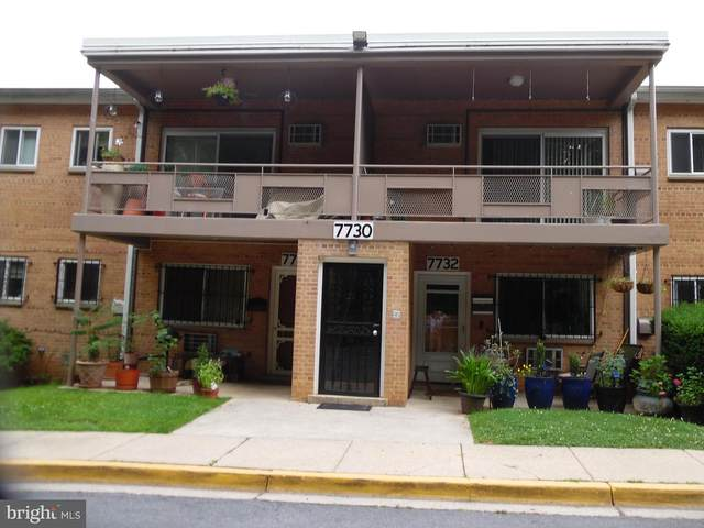 7730 Maple Avenue #18, TAKOMA PARK, MD 20912 (#MDMC763468) :: The Sky Group
