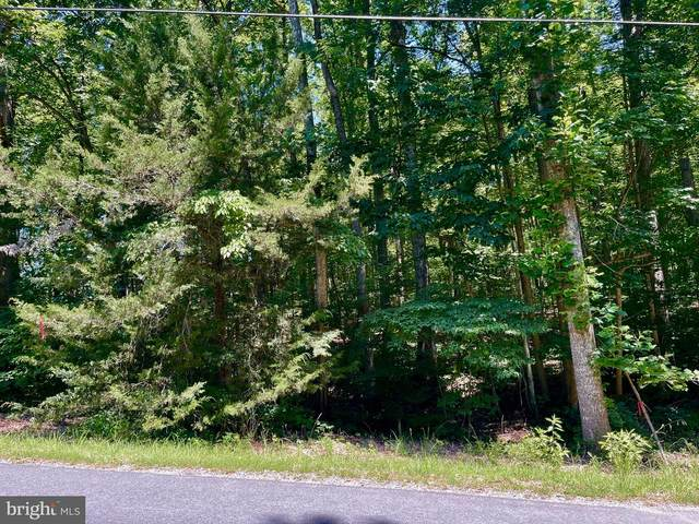 N Blue Ridge Dr, LOUISA, VA 23093 (#VALA123356) :: RE/MAX Cornerstone Realty