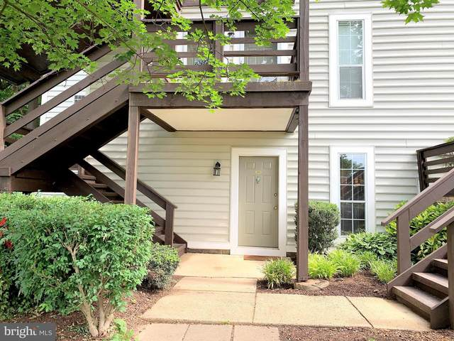 10123 Oakton Terrace Road, OAKTON, VA 22124 (#VAFX1208692) :: Nesbitt Realty
