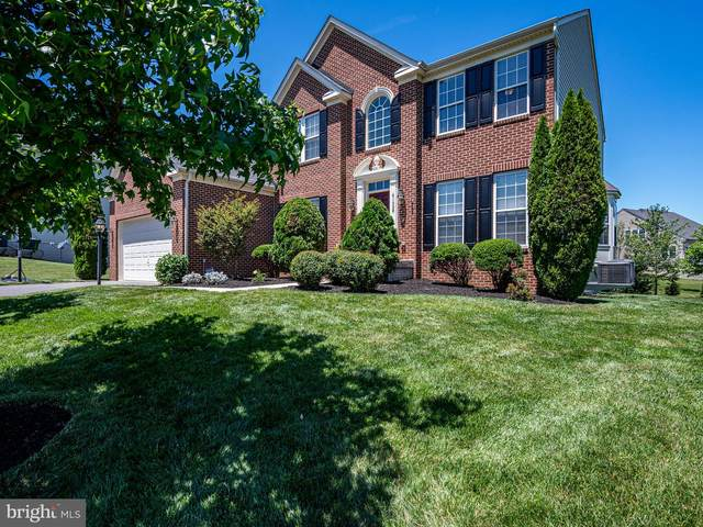 41668 Sweet Madeline Court, ALDIE, VA 20105 (#VALO441394) :: Bowers Realty Group