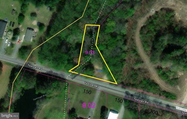 13941 Teatown Road, GREENWOOD, DE 19950 (#DESU185026) :: The Lisa Mathena Group