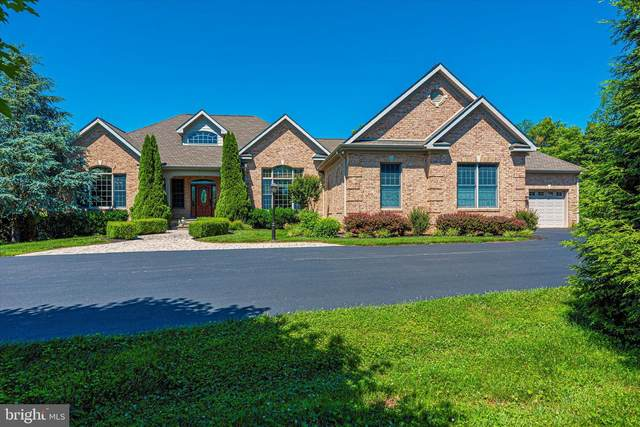 3298 N Hill Court, MIDDLETOWN, MD 21769 (#MDFR284220) :: Jim Bass Group of Real Estate Teams, LLC