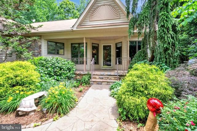 205 Pine Valley Road, LOCUST GROVE, VA 22508 (#VAOR139558) :: Pearson Smith Realty
