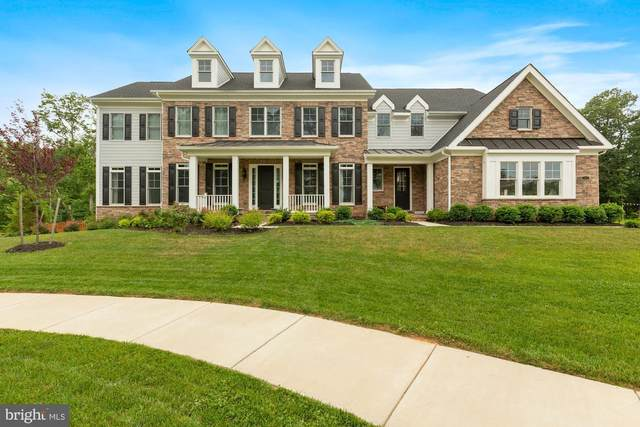24375 Linden Tree Court, ALDIE, VA 20105 (#VALO441514) :: The Piano Home Group