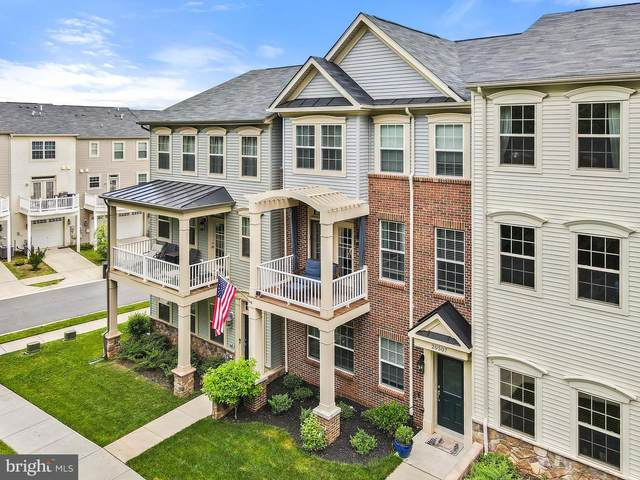 20507 Zolabeane Square, STERLING, VA 20165 (#VALO441532) :: Charis Realty Group