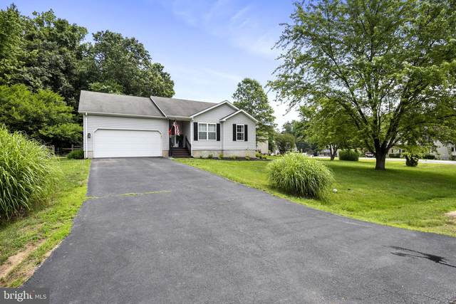 110 Winfield Drive, ELKTON, MD 21921 (#MDCC175240) :: The Piano Home Group