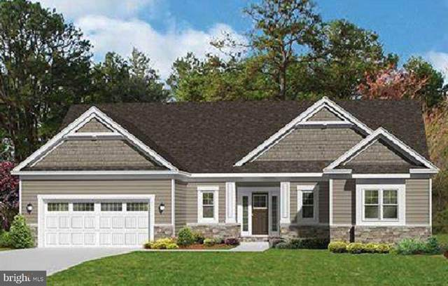 Burrisville Road, CENTREVILLE, MD 21617 (#MDQA148156) :: The Redux Group