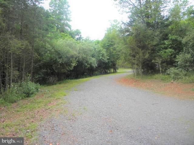 Hazel River, RIXEYVILLE, VA 22737 (#VACU144834) :: Advon Group