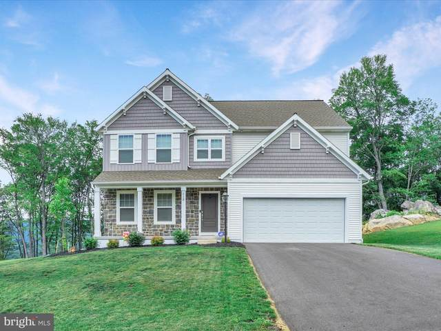 118 Stone Arch Drive, MARYSVILLE, PA 17053 (#PAPY103578) :: LoCoMusings
