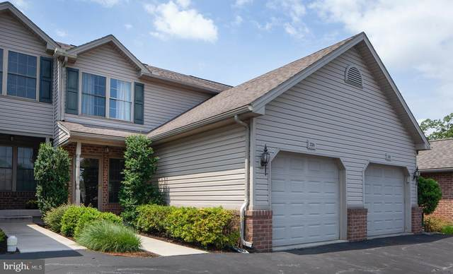 224 Whitetail Terrace, MARYSVILLE, PA 17053 (#PAPY103580) :: TeamPete Realty Services, Inc