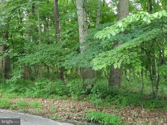 17411 Ridge Drive, ROCKVILLE, MD 20853 (#MDMC763888) :: Dart Homes
