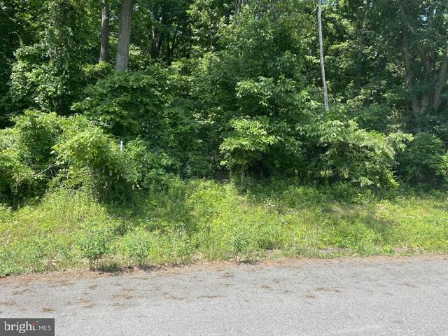 NW of-LOT#1 Laurel Street, ASHLAND, PA 17921 (#PASK135808) :: The Dailey Group