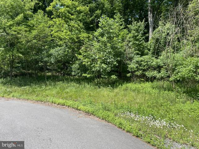 NW LOT # 3 of Laurel Street, ASHLAND, PA 17921 (#PASK135814) :: Realty Executives Premier