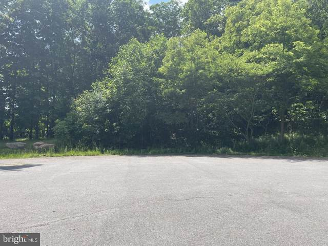 NW LOT#5 of Laurel Street, ASHLAND, PA 17921 (#PASK135818) :: The Dailey Group