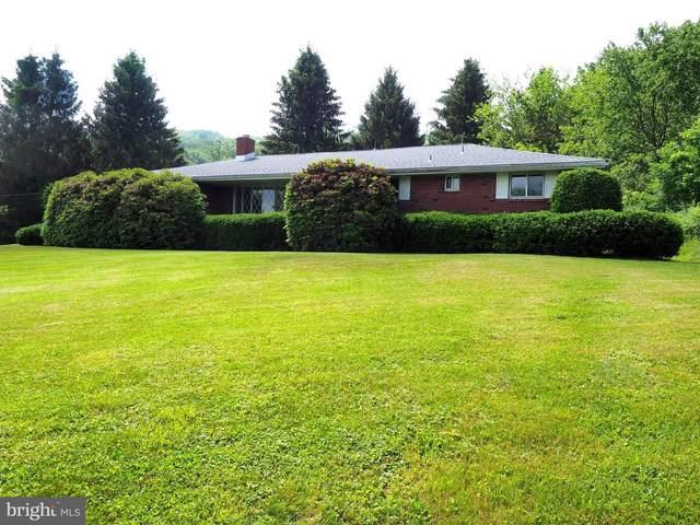 357 Tuscarora Mountain Drive, BARNESVILLE, PA 18214 (#PASK135824) :: The Joy Daniels Real Estate Group