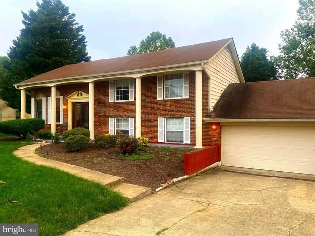 7719 Mike Shapiro Drive, CLINTON, MD 20735 (#MDPG610282) :: Crews Real Estate