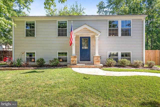 1312 Dulles Place, HERNDON, VA 20170 (#VAFX1209490) :: The Piano Home Group